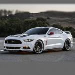 Автомобильные коврики для Ford Mustang VI 2014-