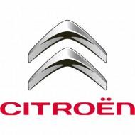 Автомобильные коврики Citroen (Ситроен)