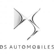 Автомобильные коврики DS (ДС)