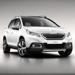 Автомобильные коврики для Peugeot 2008 2013-2019
