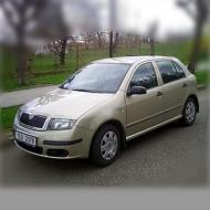 Skoda Fabia I (Mk1) 2000-2007