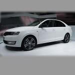 Автомобильные коврики для Skoda Rapid 2012-