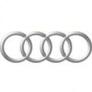 Автомобильные коврики Audi (Ауди)