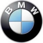 Автомобильные коврики BMW (БМВ)