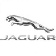 Автомобильные коврики Jaguar (Ягуар)
