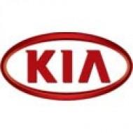 Автомобильные коврики KIA (КИА)